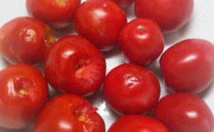 pomidory-moem-i-vyrezaem-plodonozhku